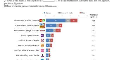 El pollo Gallardo ofensa ventaja con el 47% de preferencia electoral